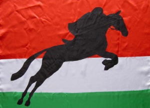 Sportflagge Ungarn Applikation von Dietmar Moews im ZDF
