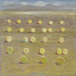 DIETMAR MOEWS DMW 640.9.4 Strohfeld Öl auf Leinwand in Dresden gemalt