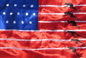 sportflagge_usa_sprint