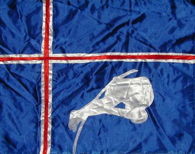 sportflagge_island_stabhochsprung